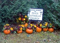 Pumpkin patch for Peace Lutheran Church